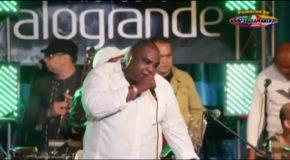Alxander Abreu y Havana D'Primera – La Celosa – En Vivo ALOGRANDE – 2014